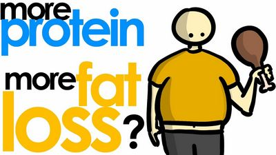 MORE vs LESS PROTEIN For Fat Loss - YouTube