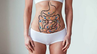 Gut Bacteria Can Influence Your Weight